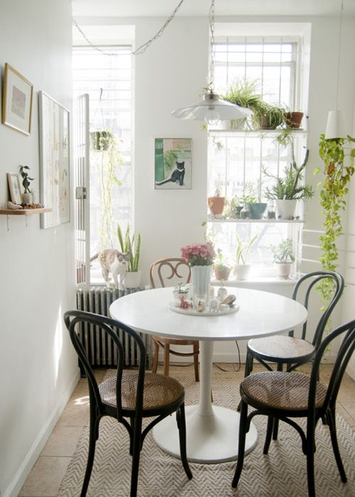 I like the use of levels in this kitchen plant decor. The plants on top draw the eye upwards creating the illusion of high ceilings and large windows.